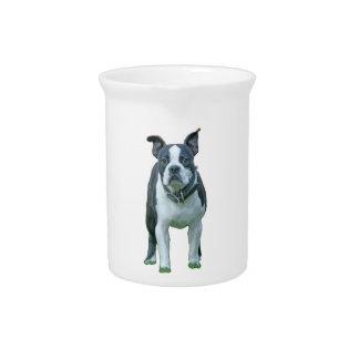 Boston terrier  1b beverage pitcher