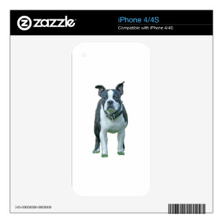 Boston terrier  1b decals for the iPhone 4