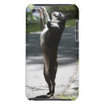Boston Terrier 2 iPod Touch Case-Mate Carcasas