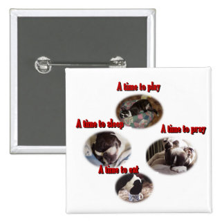 Boston Terrier:  A Time Pinback Button