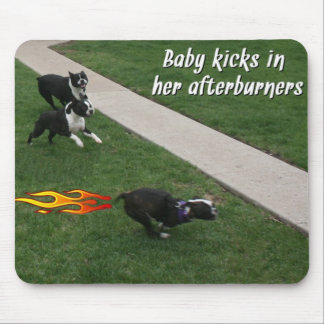 Boston Terrier:  Afterburners engaged! Mousepads