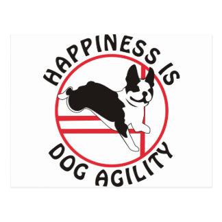 Boston Terrier Agility Happiness Postcard