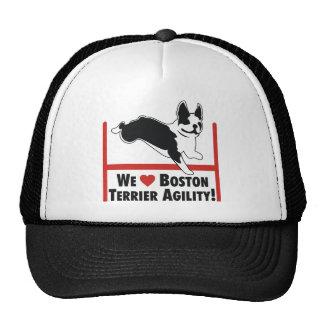 Boston Terrier Agility Hats