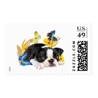 Boston Terrier and Bumble Bee Postage