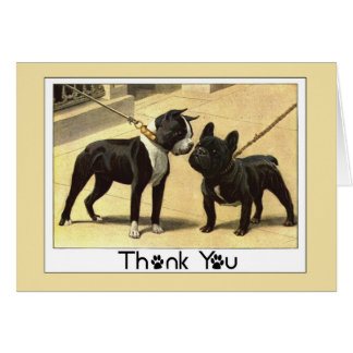 Boston Terrier and French Bulldog Thank You Greeting Card