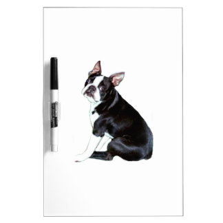 Boston Terrier (B) Dry-Erase Board