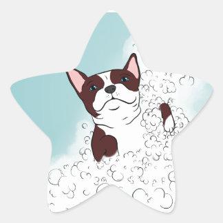 Boston Terrier Bath Star Sticker