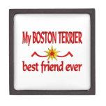 Boston Terrier Best Friend Premium Trinket Boxes