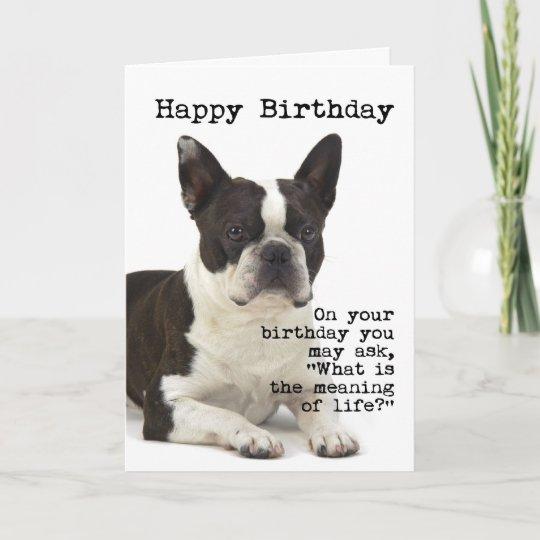 Boston Terrier Birthday Card Zazzle