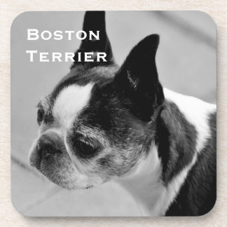 Boston Terrier Black and White Beverage Coaster