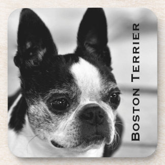 Boston Terrier Black and White Drink Coaster