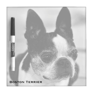 Boston Terrier Black and White Dry-Erase Boards