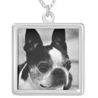 Boston Terrier Black and White Necklace