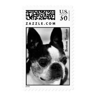 Boston Terrier Black and White Postage