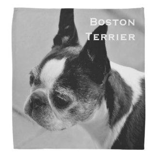 Boston Terrier blanco y negro Bandanas
