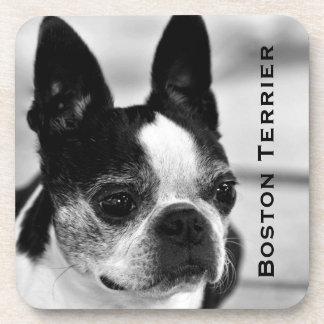 Boston Terrier blanco y negro Posavasos De Bebidas