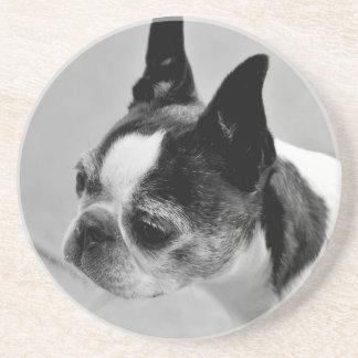 Boston Terrier blanco y negro Posavasos Personalizados