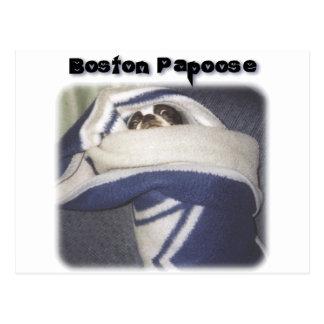 Boston Terrier:  Boston Papoose Postcard