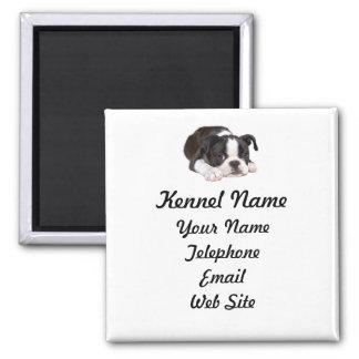 Boston Terrier Breeder Magnet