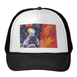 Boston Terrier Bright Colorful Pop Dog Art Hat