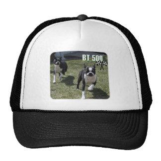 Boston Terrier:  BT 500 Trucker Hat