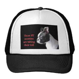 Boston Terrier:  BT zoomies taking toll Trucker Hat