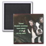 Boston Terrier: btzoomies Magnet