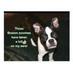 Boston Terrier: btzoomies Postcards