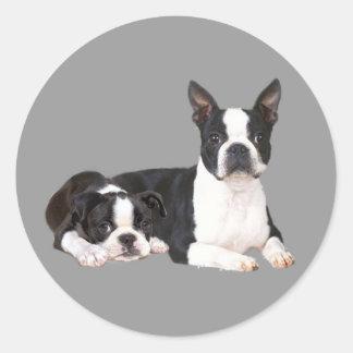 Boston Terrier Buddies Sticker