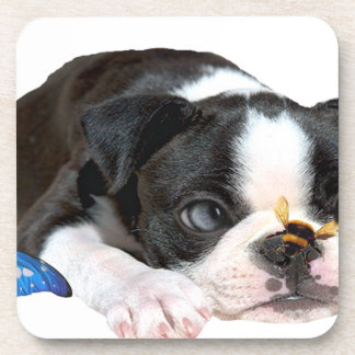 Boston Terrier Bumble Bee Art Drink Coaster