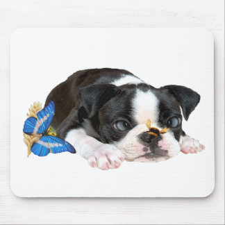 Boston Terrier Bumble Bee Art Mouse Pad