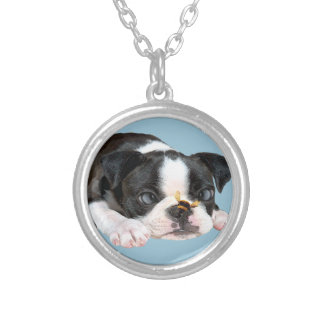 Boston Terrier Bumble Bee Art Silver Plated Necklace