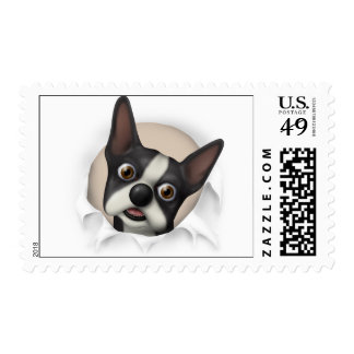 Boston Terrier Busting Out - Customized Postage Stamp