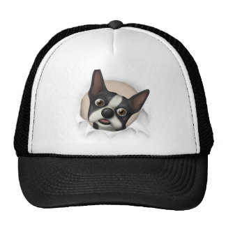 Boston Terrier Busting Out Trucker Hat