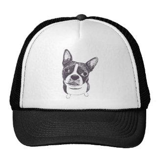 Boston Terrier by Carol Iyer Trucker Hat