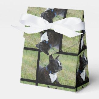 Boston Terrier Caja Para Regalos