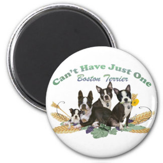 Boston Terrier Can't Have Just One Gifts Fridge Magnet