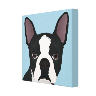 boston terrier cartoon canvas print