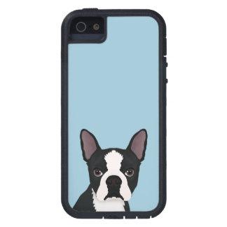 boston terrier cartoon iPhone 5 case