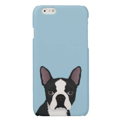 Case Savvy iPhone 6 Glossy Finish Case with Boston Terrier Phone Cases design