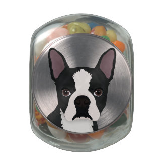 boston terrier cartoon jelly belly candy jar