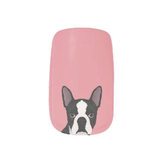 boston terrier cartoon minx nail art