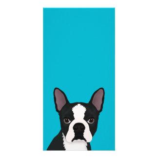 boston terrier cartoon photo card