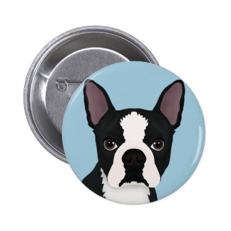 boston terrier cartoon pinback button