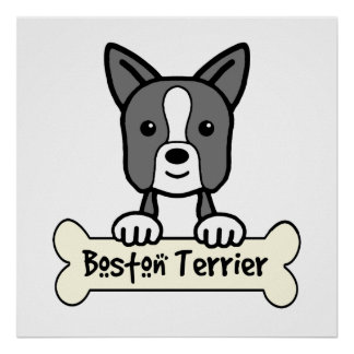 Boston Terrier Cartoon Poster