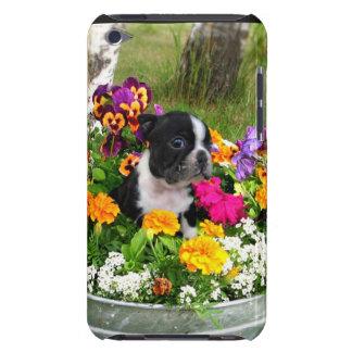 Boston Terrier iPod Case-Mate Case