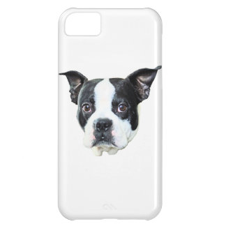 Boston terrier cover for iPhone 5C