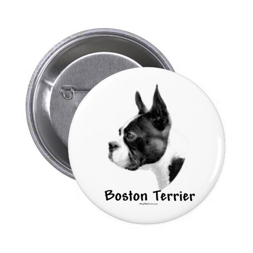 Boston Terrier Charcoal 2 - Button