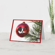 Boston Terrier Christmas Card Ball
