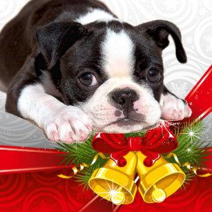 boston terrier christmas hanging ornament - Boston Terrier Outdoor Christmas Decoration